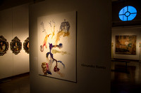 20141204_CU_Denver_Gallery_Violin_0133