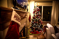 20141219_Michelle_&_Jim's_Christmas_Party_0023
