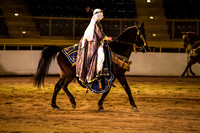 20150314_Rocky_Mountain_Horse_Expo_0768