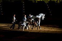 20150314_Rocky_Mountain_Horse_Expo_0686