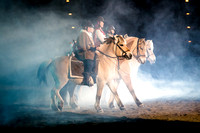 20150314_Rocky_Mountain_Horse_Expo_1225